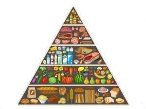 Treatment of Obesity diet
