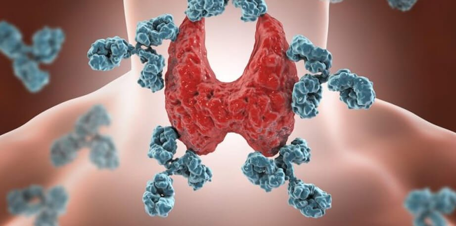 auto-immune disease reversal program